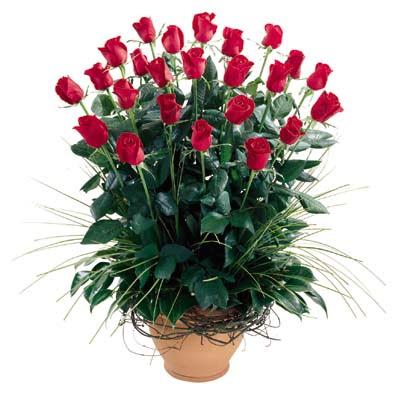 Adana çiçek siparişi uluslararası çiçek gönderme  10 adet kirmizi gül cam yada mika vazo
