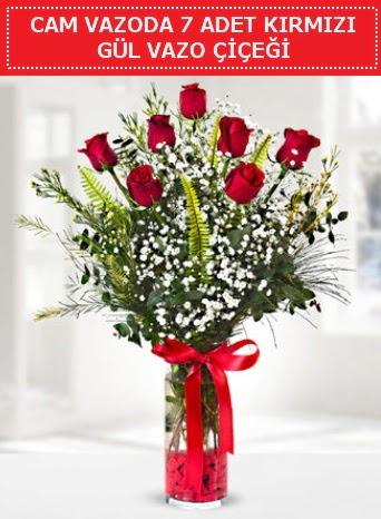 Cam vazoda 7 adet kırmızı gül çiçeği  Adana çiçek yolla çiçek gönderme sitemiz güvenlidir