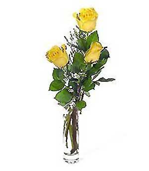 Adana çiçek siparişi internetten çiçek siparişi  3 adet kalite cam yada mika vazo gül