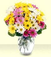 Adana çiçek siparişi internetten çiçek siparişi  mevsim çiçekleri mika yada cam vazo