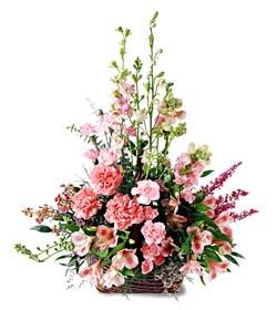 Adana çiçek gönder ucuz çiçek gönder  mevsim çiçeklerinden özel