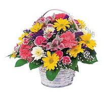 Adana çiçek gönder çiçek , çiçekçi , çiçekçilik  mevsim çiçekleri sepeti özel