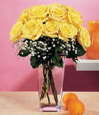 Adana çiçek gönder internetten çiçek satışı  9 adet sari güllerden cam yada mika vazo