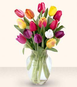 Adana çiçek siparişi çiçekçiler  13 adet cam yada mika vazoda laleler