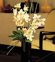 Adana çiçek siparişi çiçekçiler  cam yada mika vazo içerisinde dal orkide