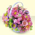 Adana çiçek siparişi yurtiçi ve yurtdışı çiçek siparişi  bir sepet dolusu kir çiçegi  Adana çiçek yolla çiçek gönderme sitemiz güvenlidir