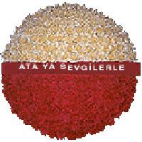 arma anitkabire - mozele için  Adana çiçek yolla çiçek gönderme sitemiz güvenlidir