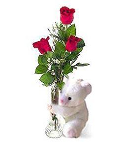 oyuncak ve 3 adet gül  Adana çiçek gönder çiçek siparişi sitesi