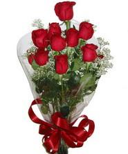 9 adet kaliteli kirmizi gül   Adana çiçek siparişi online çiçekçi , çiçek siparişi