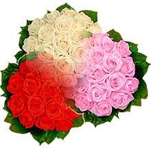 3 renkte gül seven sever   Adana çiçek gönder çiçek , çiçekçi , çiçekçilik