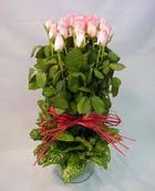 13 adet pembe gül silindirde   Adana çiçek yolla çiçek yolla