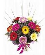 karisik gerbera çiçekleri  Adana çiçek yolla çiçek yolla