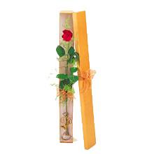 ince  kutuda  1  gül   Adana çiçek yolla çiçek yolla