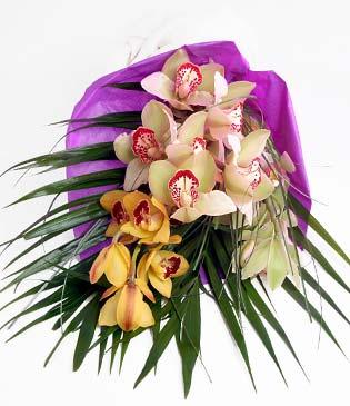 Adana çiçek siparişi cicekciler , cicek siparisi  1 adet dal orkide buket halinde sunulmakta