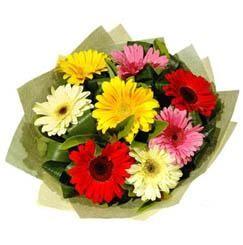 9 adet karisik gerbera demeti  Adana çiçek siparişi çiçek mağazası , çiçekçi adresleri