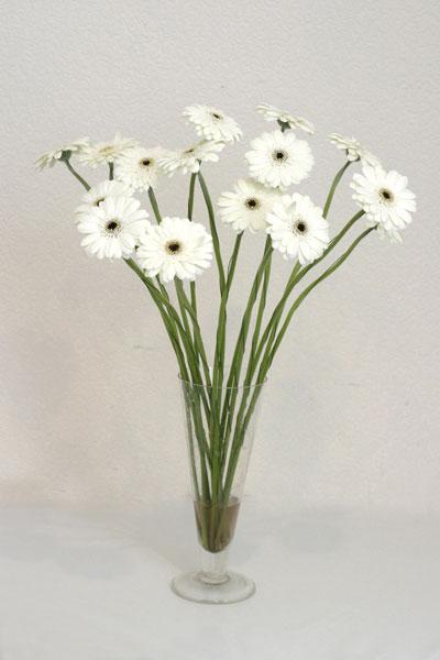 Adana çiçek siparişi çiçek mağazası , çiçekçi adresleri  cam vazo içerisinde 17 adet sade gerbera