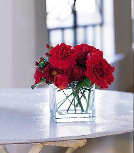 Adana çiçek gönder ucuz çiçek gönder  kirmizinin sihri cam içinde görsel sade çiçekler