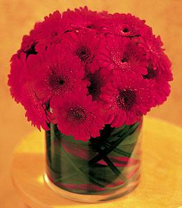 Adana çiçek gönder ucuz çiçek gönder  23 adet gerbera çiçegi sade ve sik cam içerisinde