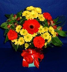 Adana çiçek gönder ucuz çiçek gönder  sade hos orta boy karisik demet çiçek