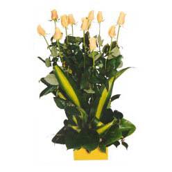 12 adet beyaz gül aranjmani  Adana çiçek siparişi kaliteli taze ve ucuz çiçekler