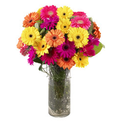 KARISIK GERBERALARDAN CAM VAZO TANZIMI  Adana çiçek siparişi güvenli kaliteli hızlı çiçek
