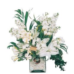 Adana çiçek siparişi internetten çiçek siparişi  sadece beyazlardan olusmus mevsim cam yada mika tanzim