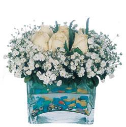 Adana çiçek gönder çiçekçi mağazası  mika yada cam içerisinde 7 adet beyaz gül