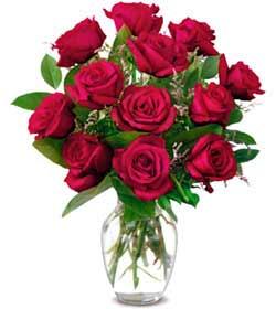 Adana çiçek siparişi online çiçek gönderme sipariş  1 düzine kirmizi gül sevenlere özel vazo gülleri