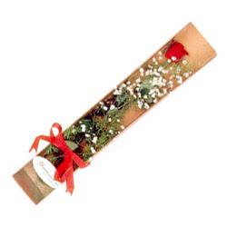 Adana çiçek gönder çiçek , çiçekçi , çiçekçilik  Kutuda tek 1 adet kirmizi gül çiçegi