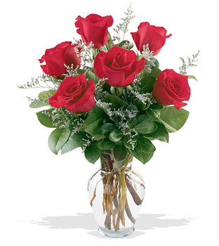 Adana çiçek siparişi cicekciler , cicek siparisi  cam yada mika vazoda 6 adet kirmizi gül