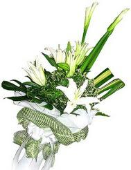 Adana çiçek siparişi güvenli kaliteli hızlı çiçek  3 dal kazablanka çiçegi ve yesillikler