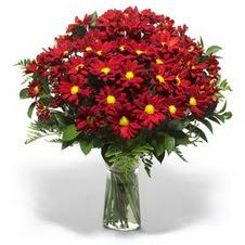 Adana çiçek yolla çiçek yolla  Kir çiçekleri cam yada mika vazo içinde