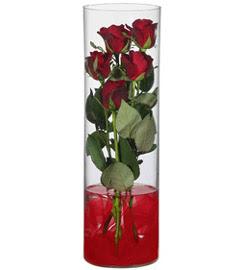 cam içerisinde 7 adet kirmizi gül  Adana çiçek siparişi çiçekçiler