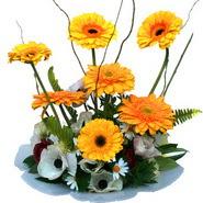 camda gerbera ve mis kokulu kir çiçekleri  Adana çiçek yolla çiçekçi telefonları