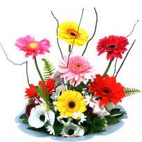 Adana çiçek gönder hediye çiçek yolla  camda gerbera ve mis kokulu kir çiçekleri