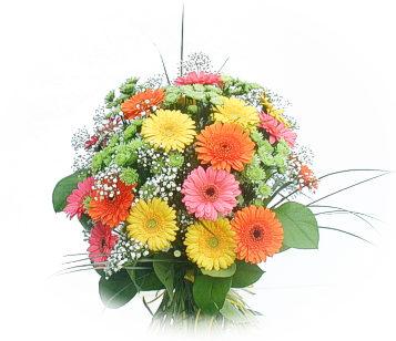13 adet gerbera çiçegi buketi  Adana çiçek siparişi online çiçek gönderme sipariş