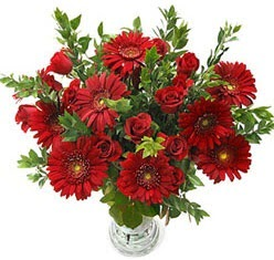 5 adet kirmizi gül 5 adet gerbera aranjmani  Adana çiçek gönder hediye çiçek yolla