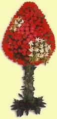 Adana çiçek yolla çiçek gönderme  dügün açilis çiçekleri  Adana çiçek siparişi çiçek online çiçek siparişi