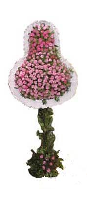 Adana çiçek gönder ucuz çiçek gönder  dügün açilis çiçekleri  Adana çiçek siparişi internetten çiçek siparişi