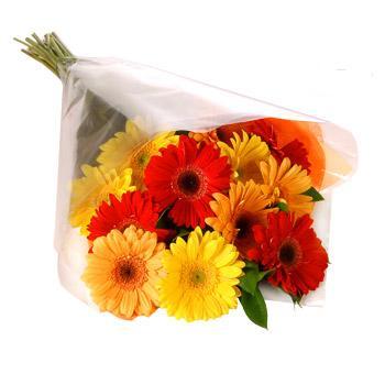 Karisik renklerde gerbera buketi  Adana çiçek siparişi cicekciler , cicek siparisi