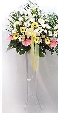 Adana çiçek siparişi online çiçek gönderme sipariş   perförje çiçegi dügün çiçekleri