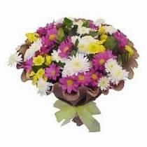 Adana çiçek yolla çiçekçi telefonları  Mevsim kir çiçegi demeti