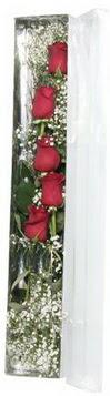Adana çiçek gönder çiçek siparişi sitesi   5 adet gülden kutu güller