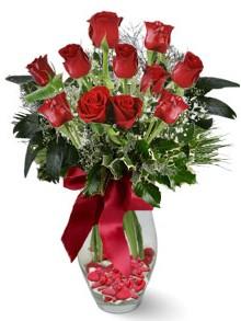 9 adet gül  Adana çiçek gönder internetten çiçek satışı  kirmizi gül