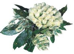 Adana çiçek siparişi internetten çiçek siparişi  9 Beyaz gül Özel kisiler için