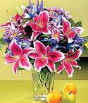Adana çiçek siparişi çiçek mağazası , çiçekçi adresleri  Sevgi bahçesi Özel  bir tercih