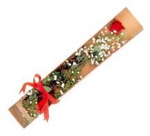 1 adet kirmizi gül  Adana çiçek yolla çiçekçi telefonları