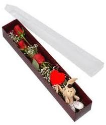kutu içerisinde 3 adet gül ve oyuncak  Adana çiçek siparişi cicekciler , cicek siparisi