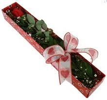 Tek kirmizi gül kutu içerisinde  Adana çiçek siparişi güvenli kaliteli hızlı çiçek