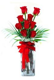 Adana çiçek yolla çiçekçi telefonları  9 adet mika yada cam vazoda gül tanzimi